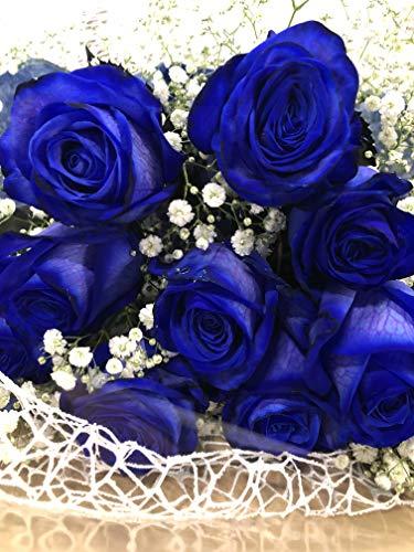 青バラ 花束 かすみ草とグリーン付き オランダ産 長持ち抜群 神秘的なブルーローズ 奇跡のお花 お中元 お見舞い 誕生日 母の日 プロポーズ (1本)