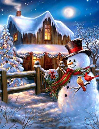 5D DIY Christmas Diamond Painting Kits, Full Drill Crystal Diamond Embroidery Cross Stitch Art, Craft Canvas Wall Decor Kits (Santa Claus-14x12in)