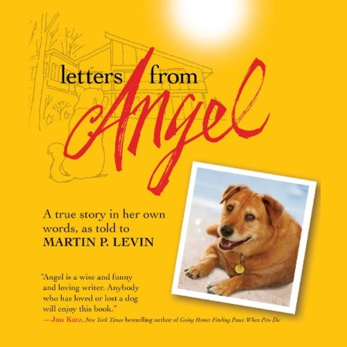 Letters from Angel cover art