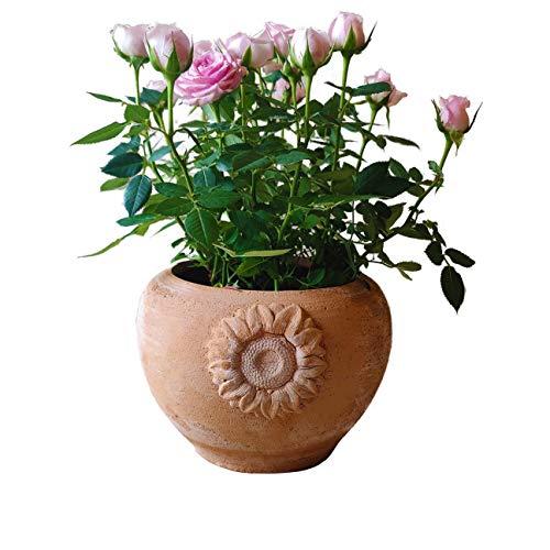 Vaso fioriera in terracotta per fiori, orchidee, piante grasse e aromatiche, peperoncino, cactus e bonsai, Diametro 18 H15 cm, Artigianale, per esterno, interno e decorare il tuo giardino