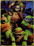 Nickelodeon Teenage Mutant Ninja Turtles Super Plush Throw, Cowabunga