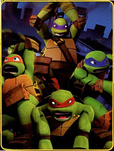 ninja turtle blanket - 9