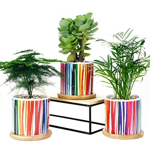 SUN-E Set di 3 vasi per piante succulente, fioriere in ceramica di cactus da 8 cm con vassoi in bambù e foro di drenaggio Idea regalo perfetta Linea arcobaleno Modello di superficie (linea arcobaleno)