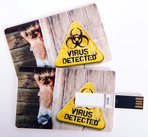 Witziger USB Stick im Visitenkartenformat, Scheckkarte, Kreditkarte, 4 GB, fieser Esel/Pferd Virus Detected, ideal als Datenspeicher oder Geschenk