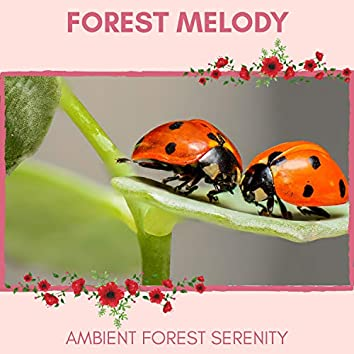 Forest Melody - Ambient Forest Serenity