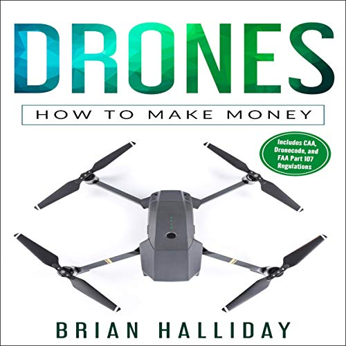 Drones: How to Make Money: Drones Series, Book 5