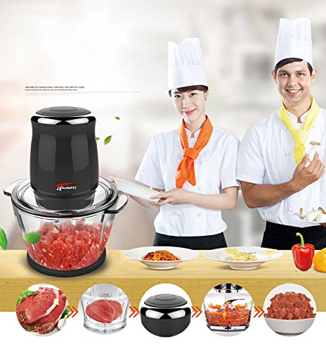 JianYaNa Premium Quality Electric Meat Grinders 220V 500W Stainless Steel Spice Grinders Used as Choppers, Mincers, Blender for Meat, Vegetables, Fruit and Spice with Black & Red Wine Choice (Black)