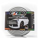EZ Lip Colors – The Original Universal Fit 1-Inch Lip Spoiler (Silver)