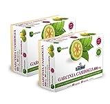 Nature Essential Garcinia Cambogia 800 mg ext seco 60% HCA - 60 capsulas, Pack 2 unididades
