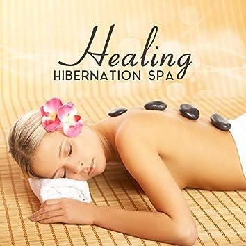 Healing Hibernation Spa: Silent Rejuvenation, Vital Regeneration, Organic Treatment, Catharsis Relaxation, Zen Massage