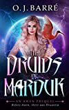 The Druids of Marduk, Part II: UnderEarth, A Prequel to the Awen Trilogy (English Edition)