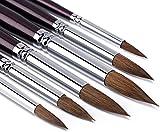 GP 6 pezzi rotonda Point punta del pennello set Sable capelli Artista qualità Art Painting Brush