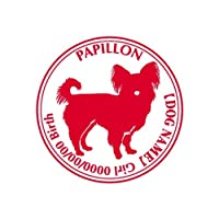 ワラ犬 パピヨン (パピオン)横向き ステッカー Cパターン ガール ゴールド