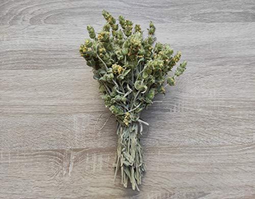 Organischer Griechischer Bergtee Sideritis Syriaca Malotira 220 gramm bis 5 KG Ernte 2020 (220 gramm)