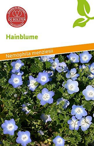 De Bolster 15690 Hainblume (Bio-Hainblumensamen)