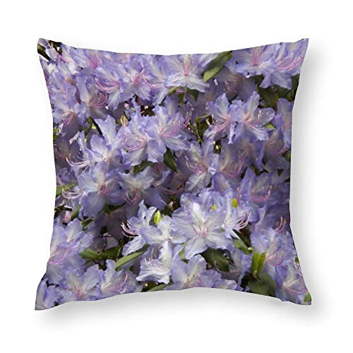 """Purple Rhododendrons Floral Photo Cotton Throw Pillow Covers Case Cushion Pillowcase with Hidden Zipper Closure for Sofa Bench Bed Home Decor 24""""x24"""""""