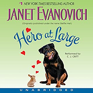 Hero at Large audiobook cover art