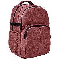 Amazon Basics Urban Laptop Backpack