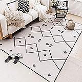 CHUANGCHUANG BB- Moderner Minimalista Nordic Ins Living Room Teppich Marokko Sofa Tische Tatami Mats Schlafzimmer Kommode Decke 330 140 * 200cm C