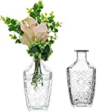Sziqiqi 2 Piezas de Jarrón de Vidrio para Flores 18.5cm Transparente Elegante en Relieve Flores de Vidrio en Relieve Jarrón Botella para Mesa Centro de Mesa Decoración Sala de Estar Hogar Boda Evento