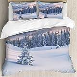 Ultraweicher Bettbezug,Schneebäume auf Winterbergen getönt wie,Mikrofaser-gewaschene Bettdecke mit verstecktem Reißverschluss, für Ganzjahresbettwäsche 3er-Set (1 Bettbezug 94x86 Zoll + 2 Kissenbezug)