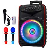 AVAH Karaoke Machine for Adults & Kids Portable Pa Speaker System with 3 Mic, 300W DJ Speakers with Lights, 12' Subwoofer Bluetooth Speaker,USB/AUX/FM Radio (AVAH-D12)