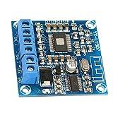 Hilitand TPA3166D2 Amplificador de Potencia de Audio Bluetooth Módulo 50W * 2 estéreo de Doble Canal DC 12-24V