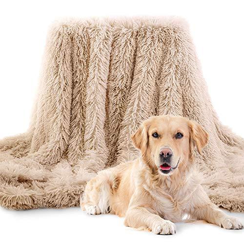 laamei Flauschige Hundedecke, Hundedecke Haustier Super Softe Warme und Weiche Flauschig Fleece Maschinenwaschbar katzendecke für Hundebett Sofa und Couch (Beige, 75x100cm)