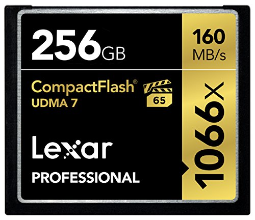Lexar Professional 1066 x 256GB VPG-65 CompactFlash card (Up to 160MB/s Read)...