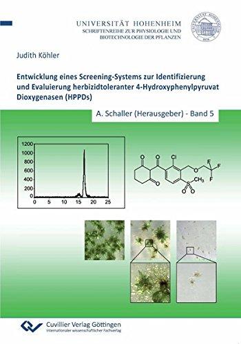 Entwicklung eines Screening-Systems zur Identifizierung und Evaluierung herbizidtoleranter 4-Hydroxyphenylpyruvat Dioxygenasen (HPPDs) (Physiologie und Biotechnologie der Pflanzen)