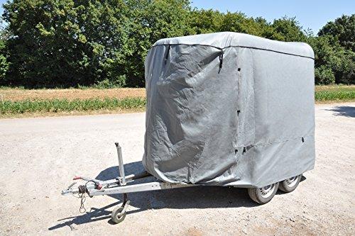 Trailer-Pool 001001500 Plane Für Pferdeanhänger