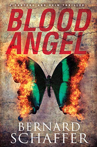 Blood Angel (The Santero and Rein Thrillers Book 3)