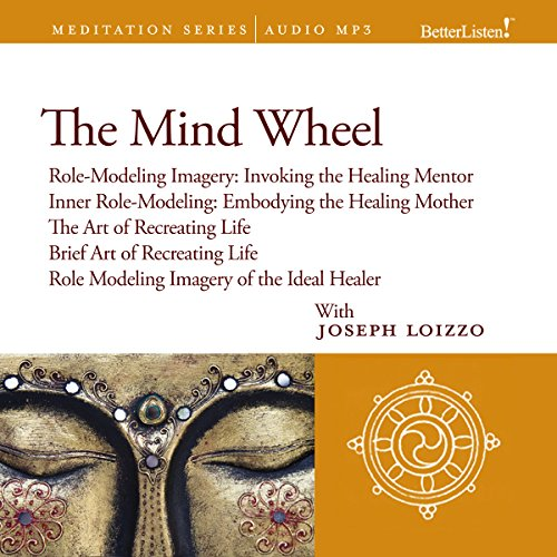 The Mind Wheel audiobook cover art