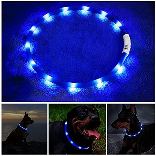 Hundehalsband Leuchtend, Haustier Sicherheit Leuchthalsband Hund, Längenverstellbarer LED Leuchthalsband Halsband Hund USB Wiederaufladbar, Halsband Für Kleine Mittel Groß Hunde, 3 Modus (Blau)