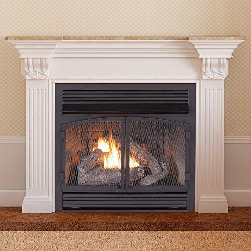 Duluth Forge Dual Fuel Ventless Fireplace Insert-32,000 BTU, Remote Control, FDF400RT-ZC, Black