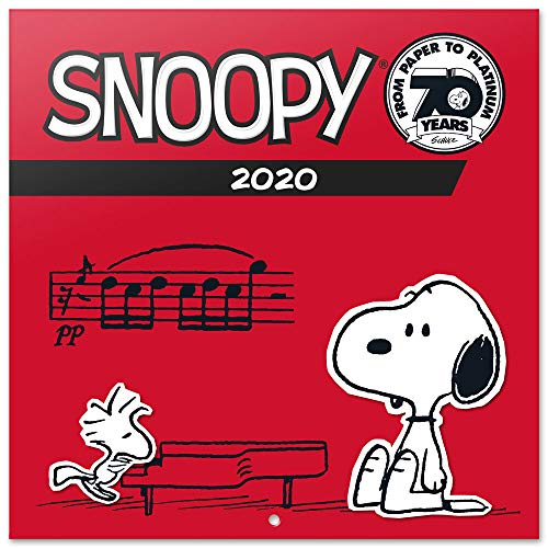 Erik® - Calendario 2020 da muro Snoopy. Licenza ufficiale, 30x30 cm, 16 mesi