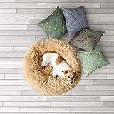 Zoom IMG-1 sogni e capricci pets cuccia