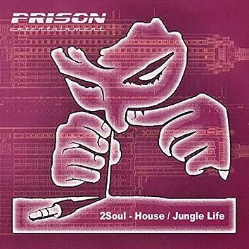 House / Jungle Life