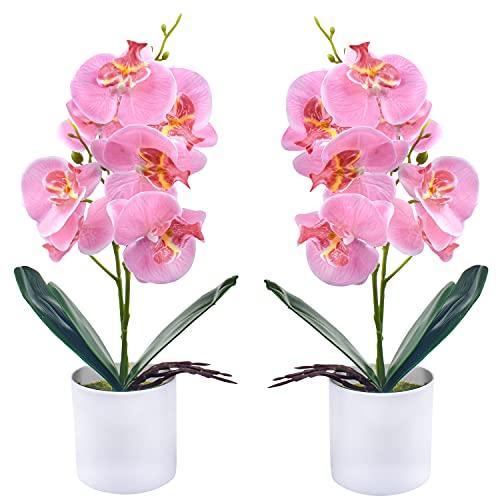 Flores de orquídeas Artificiales - 2 Piezas de Flores de orquídeas Falsas...
