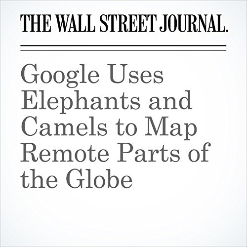 Google Uses Elephants and Camels to Map Remote Parts of the Globe copertina