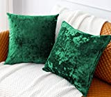 PANDATEX Pack of 2 Luxury Crushed Velvet Green Throw Pillow Covers for Sofa Couch Chair, 18'x 18' Square Decorative Plush Pillowcases Cushion Cover for Bedroom Livingroom Car