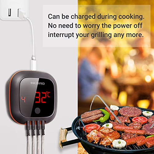 Smart BBQ thermometer for grilling