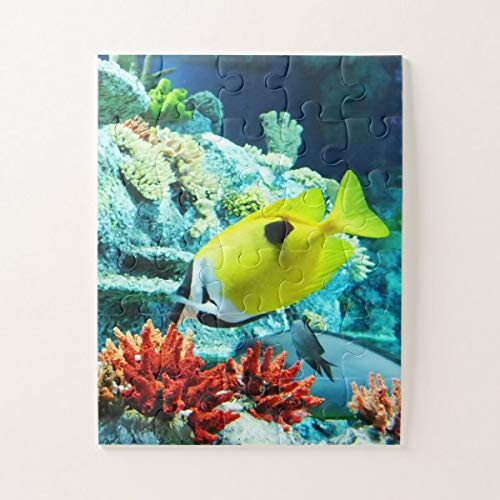 CICIDI Tropical Fish Animal Jigsaw Puzzle 1000 Pieces for Adults, Entertainment DIY Toys for Creative Gift Home Decor