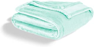 ViscoSoft Fleece Blanket Queen Size | Soft & Plush, Lightweight Design |Mint Green Throw Blanket