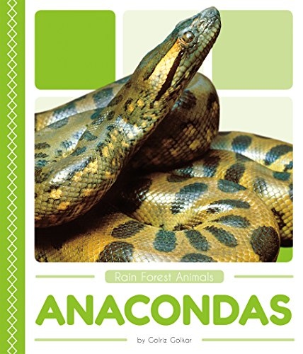 Rain Forest Animals: Anacondas