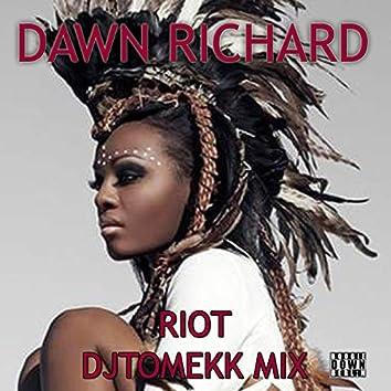 Riot (DJ Tomekk Remix)