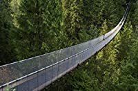 Ipea 森の中の観光橋キャンバス絵画ポスターHdプリント壁アートルーム装飾家の装飾-20X30インチフレームなし