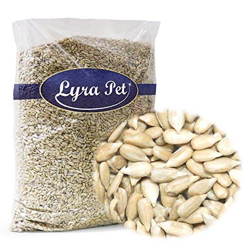 Lyra Pet® 25 kg Sonnenblumenkerne 25000 g geschält Wildvogelfutter Vogelfutter kein Bruch