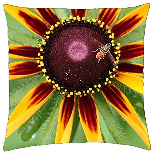 LESGAULEST Throw Pillow Cover (24x24 inch) - Nature Summer Flora Bright Beneficial Insects