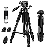 10 Best Camera Tripod for Canons